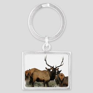 Trophy bull elk 2 Keychains