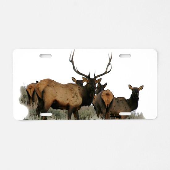 Trophy bull elk 2 Aluminum License Plate
