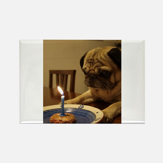 Happy Birthday Pug Magnets