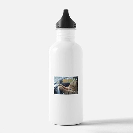 Driving Cat Water Bottle