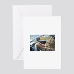 Driving Cat Greeting Cards
