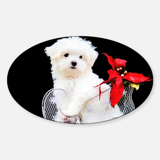 Cute Animals dog white poodle Sticker (Oval)