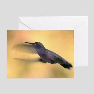 Hummingbird Greeting Cards (Pk of 20)