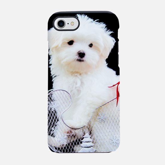 Maltese Puppy in Silver Sled iPhone 8/7 Tough Case