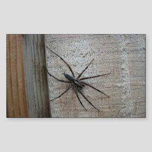 Helaine's Spider Rectangle Sticker