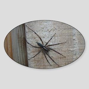 Helaine's Spider Oval Sticker