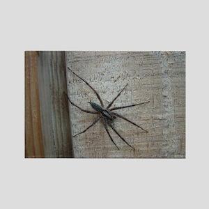 Helaine's Spider Rectangle Magnet