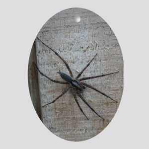 Helaine's Spider Oval Ornament