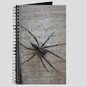Helaine's Spider Journal