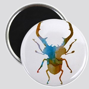 Stag beetle Magnets