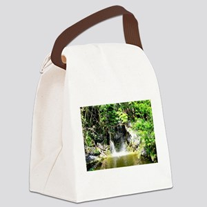 Bahamas Waterfall 2 Canvas Lunch Bag