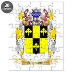 Simmonite Puzzle