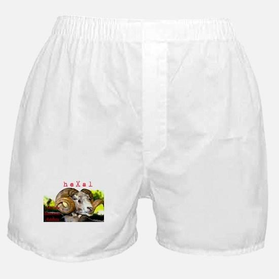 heXal Manifesto Boxer Shorts