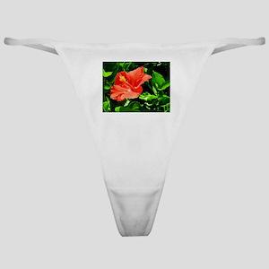 Botanical Beauty Classic Thong