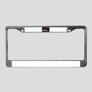 American Falls at night License Plate Frame