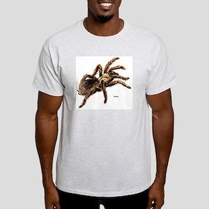 Tarantula Spider (Front) Ash Grey T-Shirt