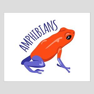Amphibians Posters