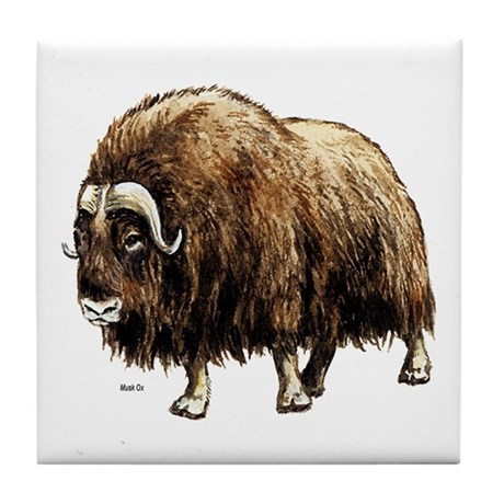 Musk Ox Artic Tile Coaster
