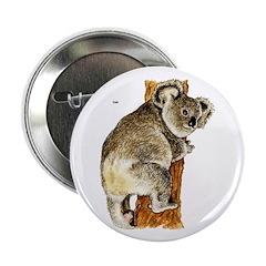 Koala Australian 2.25