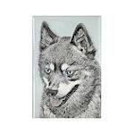 Alaskan Klee Kai Rectangle Magnet (10 pack)