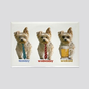 """""""3 day week"""" yorkie Rectangle Magnet"""