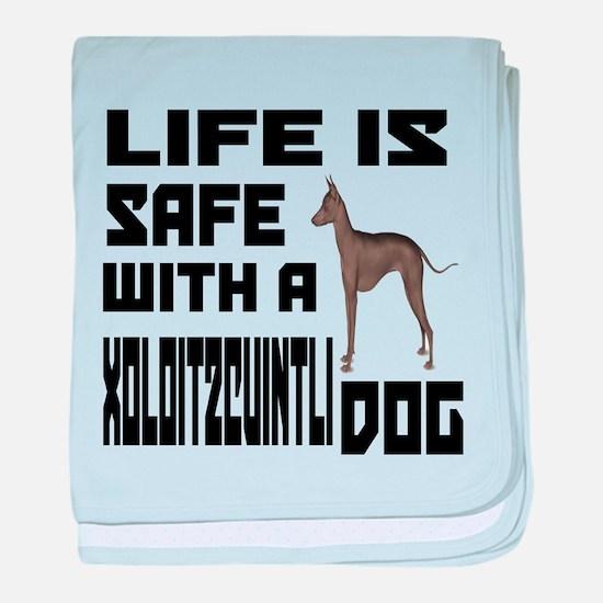 Life Is Safe With A Xoloitzcuintli Do baby blanket