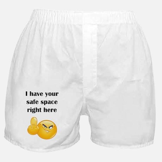 Cute Campus Boxer Shorts