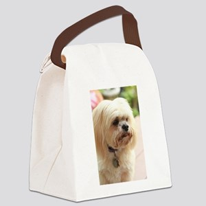 Koko lhasa close up Canvas Lunch Bag