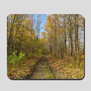 Hiking Trail In Autumn Mousepad