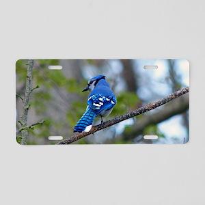 Blue Jay Aluminum License Plate