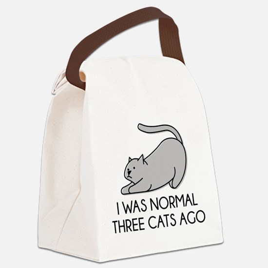 I Was Normal Three Cats Ago Canvas Lunch Bag