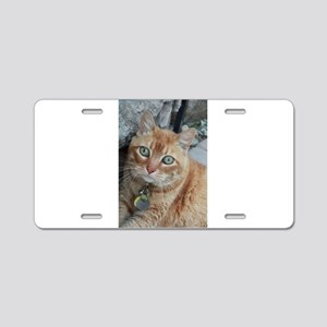 orange kitty Simba Aluminum License Plate