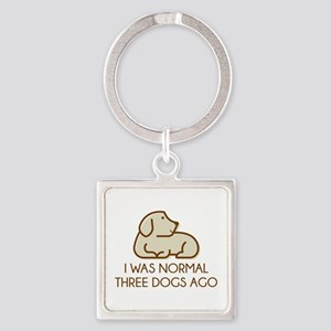 I Was Normal Three Dogs Ago Square Keychain