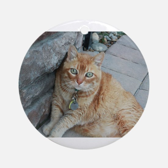 Simba orange tabby cat Round Ornament