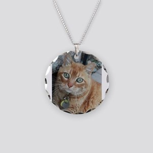 orange kitty Simba Necklace Circle Charm