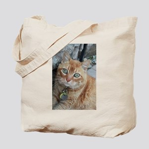orange kitty Simba Tote Bag