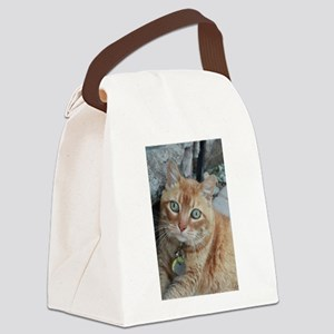 orange kitty Simba Canvas Lunch Bag