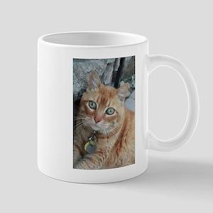 orange kitty Simba Mugs
