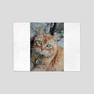orange kitty Simba 5'x7'Area Rug