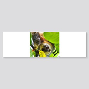 Sloth_20171109_by_JAMColors Bumper Sticker