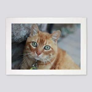wide eyed Simba tabby cat 5'x7'Area Rug