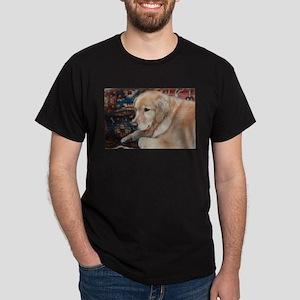 Nala the golden relaxing T-Shirt