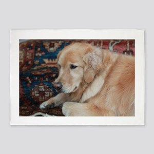 Nala the golden relaxing 5'x7'Area Rug