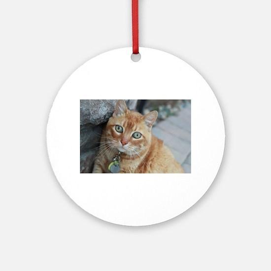 tabby cat Simba Round Ornament