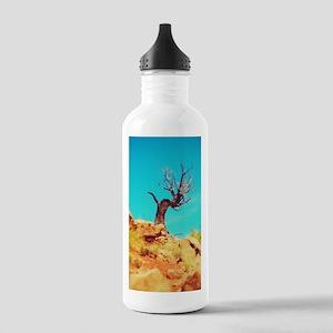Moab Tree Water Bottle