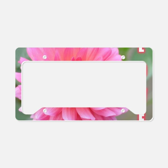 Greetingcard License Plate Holder