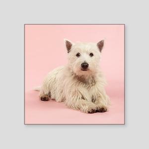 "HAPPY DOG Square Sticker 3"" x 3"""