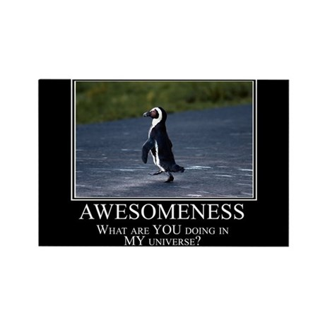 Awesomeness Rectangle Magnet (10 pack)