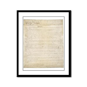 The Us Constitution Framed Panel Print