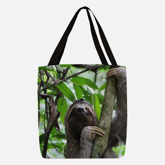 Sloth_20171101_by_JAMFoto Polyester Tote Bag